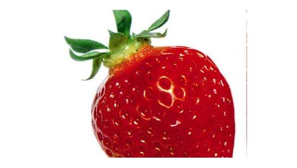 Las características de la frutilla