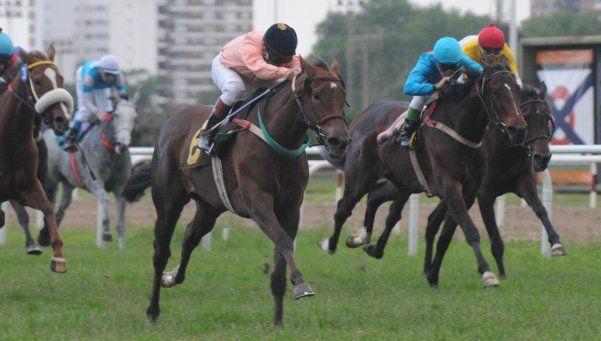 Todas las carreras de hoy en La Plata