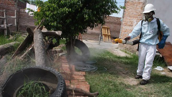 Desarrollan nuevo sistema para combatir el dengue