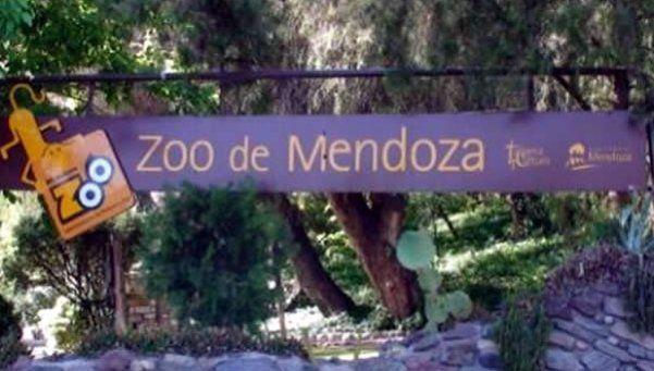 Murió otro animal en el Zoo de Mendoza