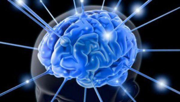 Cerebros empáticos