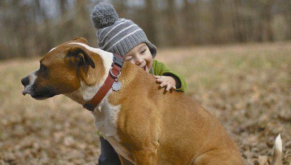 Comprueban que los perros saben qué les dicen sus dueños