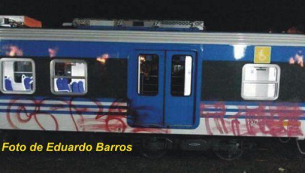 Indignante: grafitearon las nuevas formaciones del tren Belgrano Sur