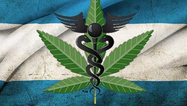 Marcha de madres por el cannabis medicinal