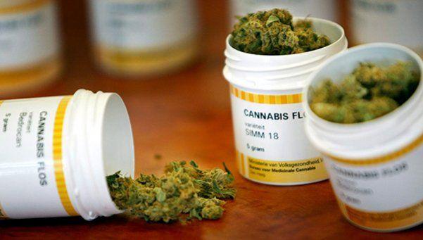 Médicos deben recetar cannabis a sus pacientes clandestinamente