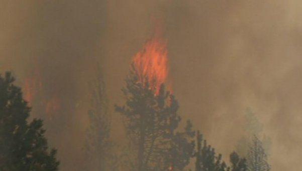 Incendio forestal en Bariloche