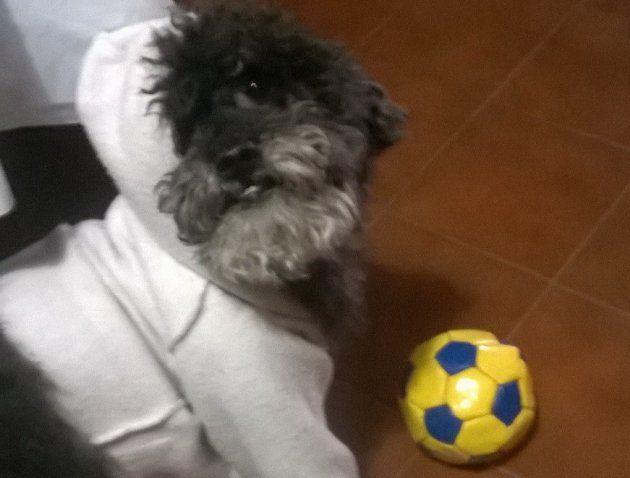 Felipe y su pelota
