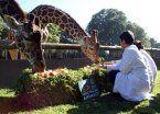 Polémica por destino de animales de Zoo