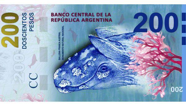 Polémica: la ballena al revés y otros errores del billete de $200