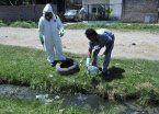 Alerta frente al dengue continuará hasta mayo