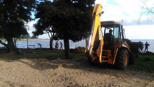 Culebras mordieron a cinco personas en la Ribera de Quilmes