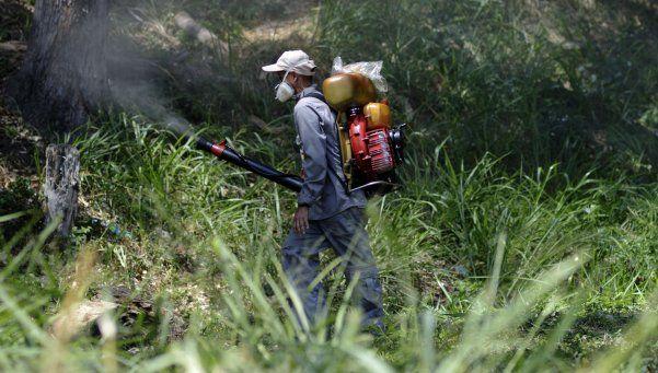 Lemus aseguró que los mosquitos del zika resisten a la fumigación