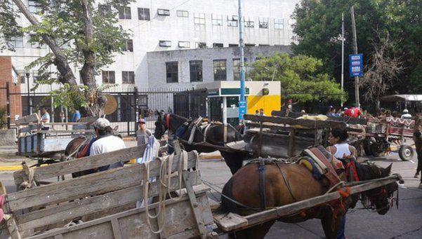 Quieren que los carreros  no utilicen más caballos