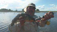 Taruchas con artificiales en Dos Aguas de Bragado