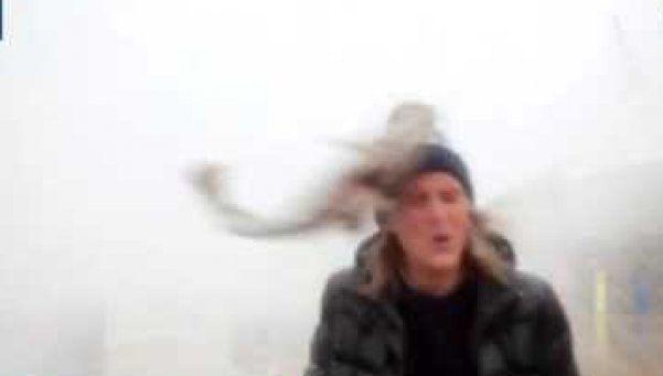 Video | Insólito: pez abofetea a periodista en vivo