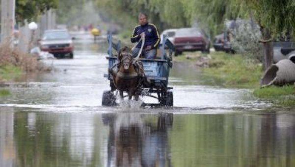 Desbordó el río y hay calles inundadas en Tigre