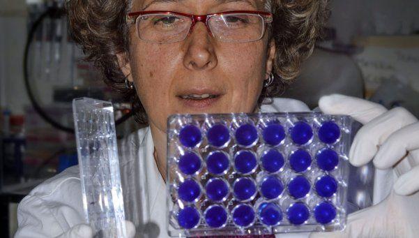 Premian en Francia a la médica Andrea Gamarnik