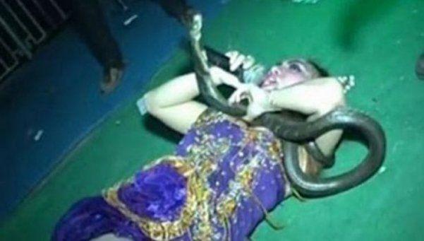 Estrella pop murió al ser mordida por una cobra en pleno show