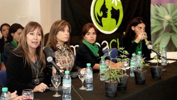 Exponen en Diputados sobre cannabis medicinal
