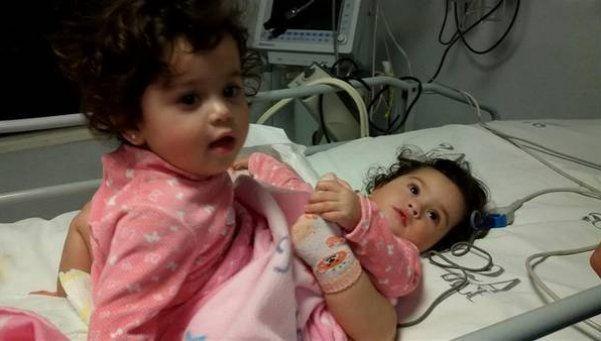 Dieron de alta a la siamesa sobreviviente a la cirugía de separación