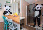 Video | Vende su casa vestido de oso panda