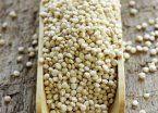 Quinoa, la semilla que salva vidas