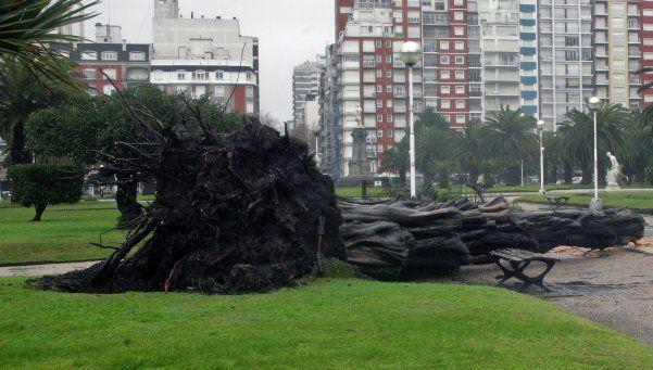 Por intenso temporal en Mar del Plata, se suspendieron las clases