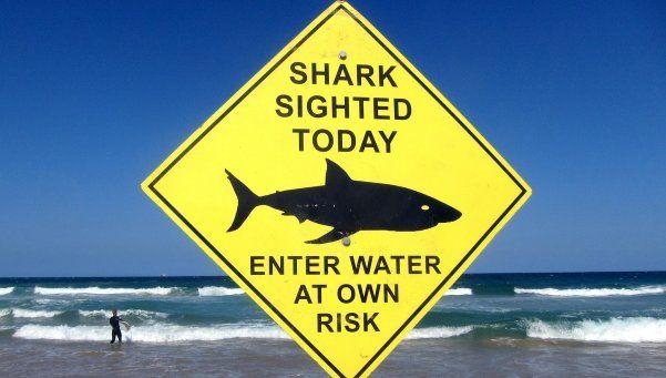 Australia: buceadora murió por ataque de un tiburón
