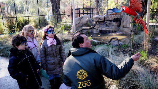El zoo porteño reabrirá el 16 de julio y será con acceso limitado