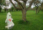 Video | ¿Los fantasmas tienen debilidad por las hamacas?