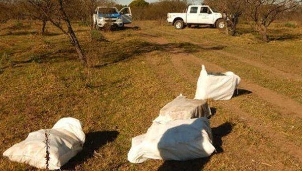 Entre Ríos: una avioneta arrojó 400 kilos de marihuana en un campo