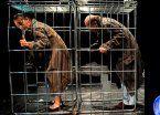 El Camarín del Teatro: La Zaranda en el Cervantes