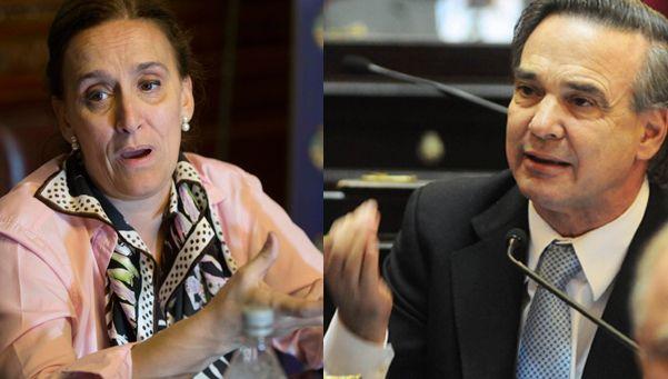 Video | Pichetto quiso darle una clase a Michetti en el Senado