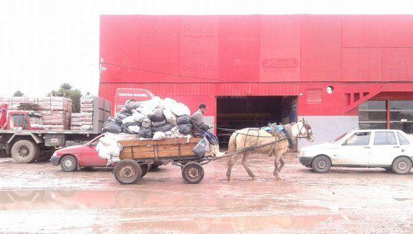 En pleno siglo XXI, en Ezeiza contratan carreros para recoger los residuos