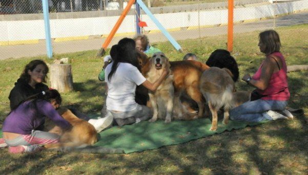 Cuando el perro es mucho más que el mejor amigo