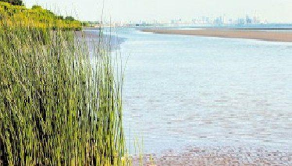 Buscan  recuperar la Reserva Costera de Avellaneda