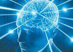 Sobre la neuroplasticidad