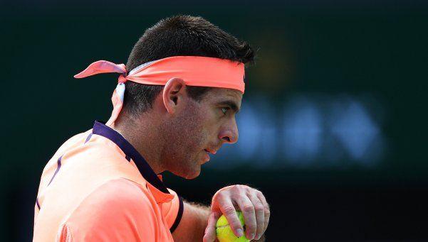 Del Potro le ganó a Almagro y se viene una prueba de Copa Davis