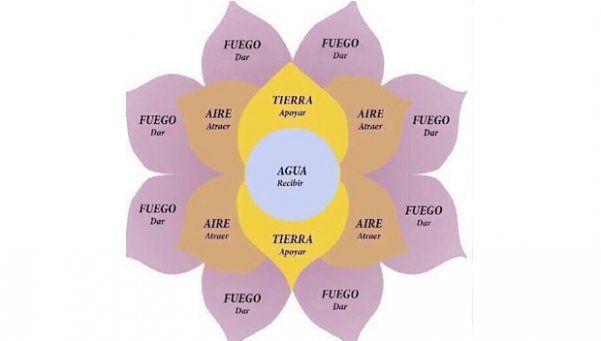 """La Rioja: denuncian estafas con la """"Flor de la Abundancia"""""""