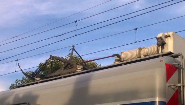 La caída de un rayo interrumpió el servicio del Ferrocarril Roca