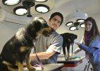 Juntan  firmas  para  hospital veterinario en Hurlingham