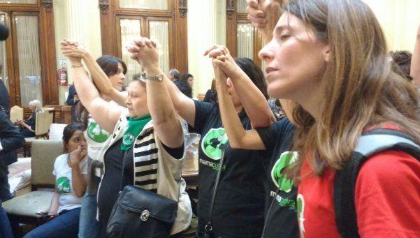 Histórico: Diputados dio media sanción al proyecto de cannabis medicinal