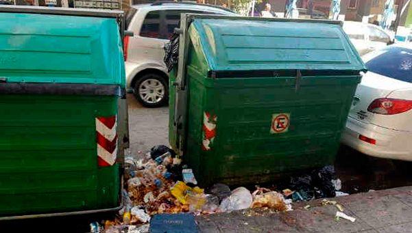 Denuncian invasión de ratas en el centro de Quilmes