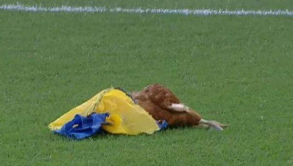 En Newells tiraron una gallina muerta envuelta en una bandera de Central