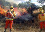 La Pampa: logran controlar 6 de 10 nuevos incendios