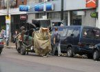 Los carritos tiene un tiempo limitado en Lanús