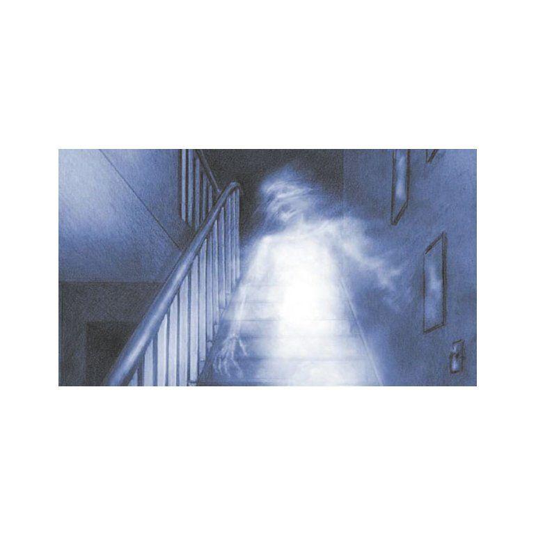 Una joven producía fenómenos paranormales en José C. Paz