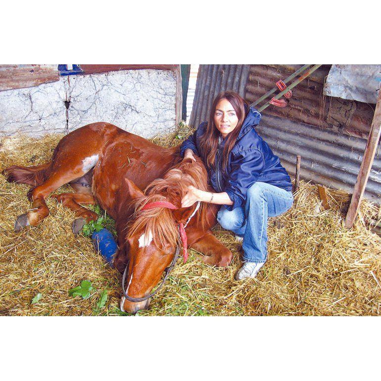 Dolores puso el alma para ser veterinaria de los cartoneros