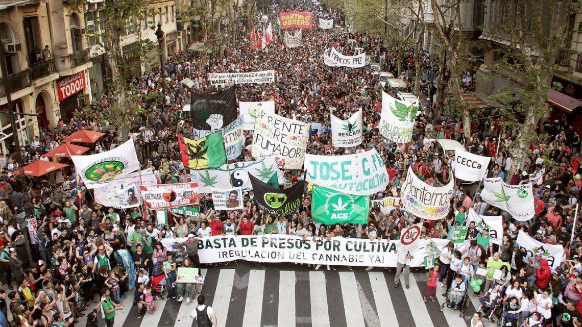 ¿Despenalizar, legalizar o regular el cannabis? La terminología para el debate que se viene en la Argentina
