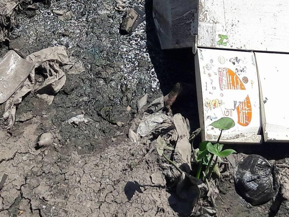 Macabro hallazgo de un cadáver en una heladera en las espesas aguas del Arroyo del Rey
